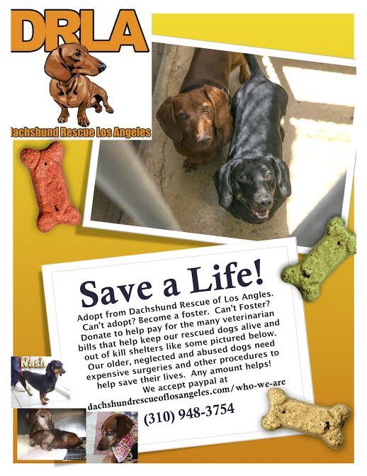 Foster! Donate! Volunteer to transport! Save lives